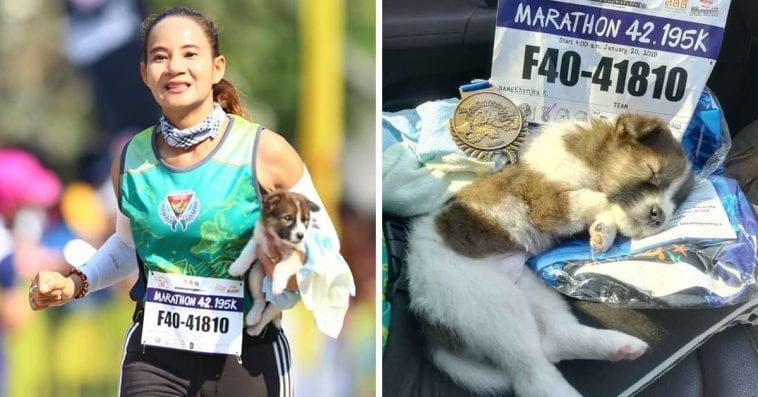 Woman Finished 19 Miles Marathon Carrying Rescued Puppy petworldglobal.com