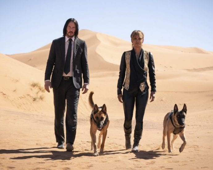 john wick 3 movie belgian malinois