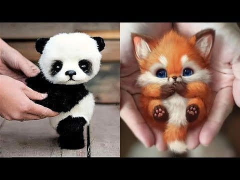 10 Cutest Baby Animals That Will Make You Go Aww petworldglobal.com