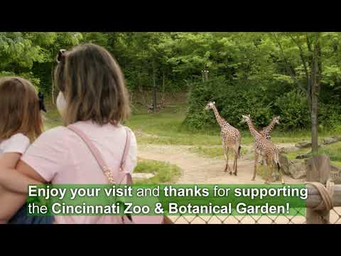 What to Expect When You Come to the Zoo - Cincinnati Zoo July 2020 petworldglobal.com