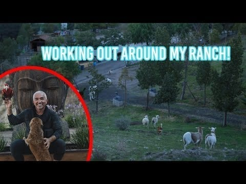 How Cesar Millan exercises at his ranch! petworldglobal.com